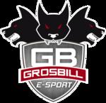 Grosbill E-Sport